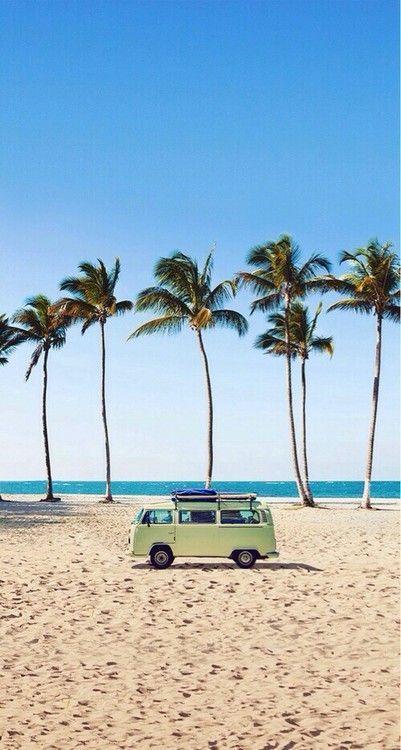 Beach Palm Trees Kombi Van Wanderlust Beach Summer Summer Vibes