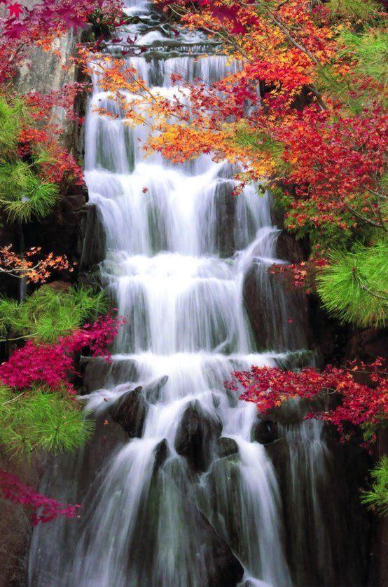 Pin By Brian On Waterfall Autumn Waterfalls Fall Photography Nature Waterfall