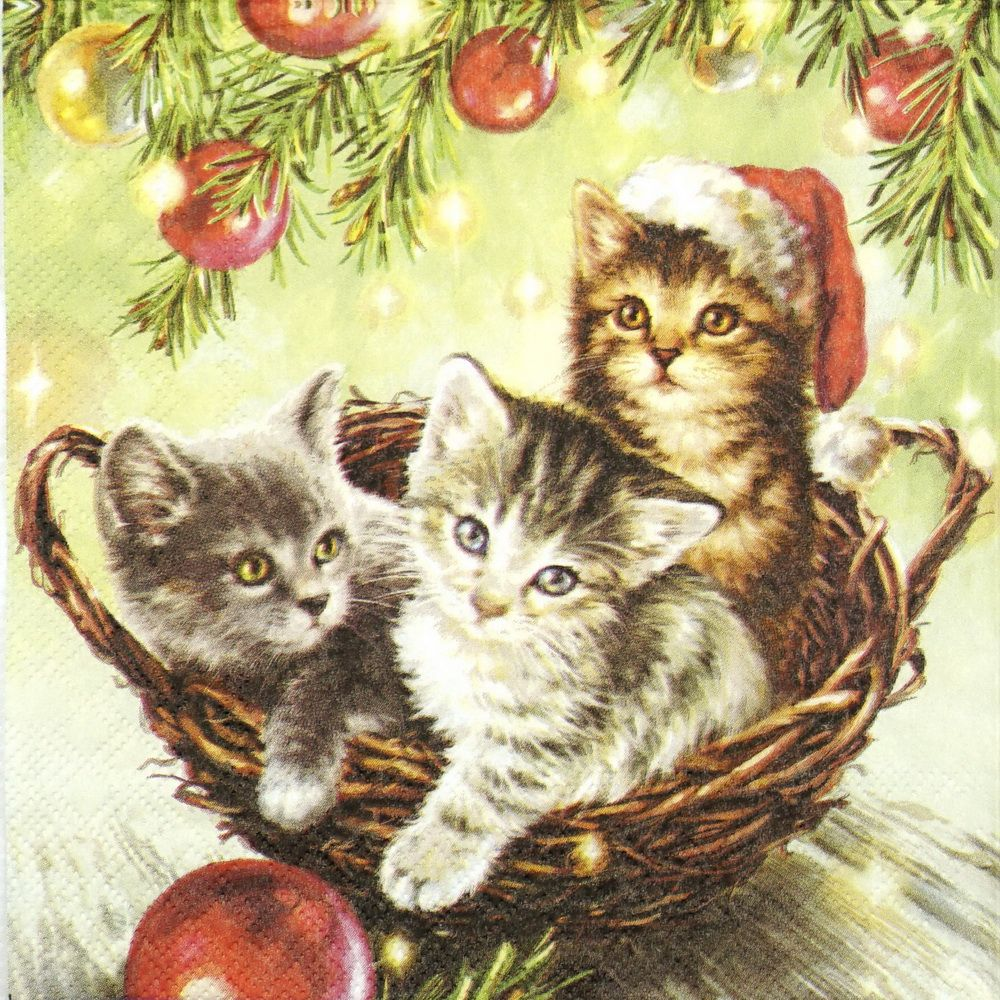 Paper Napkin Cats in Basket Paper napkins, Napkins