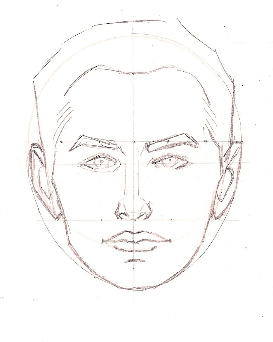 / face proportions