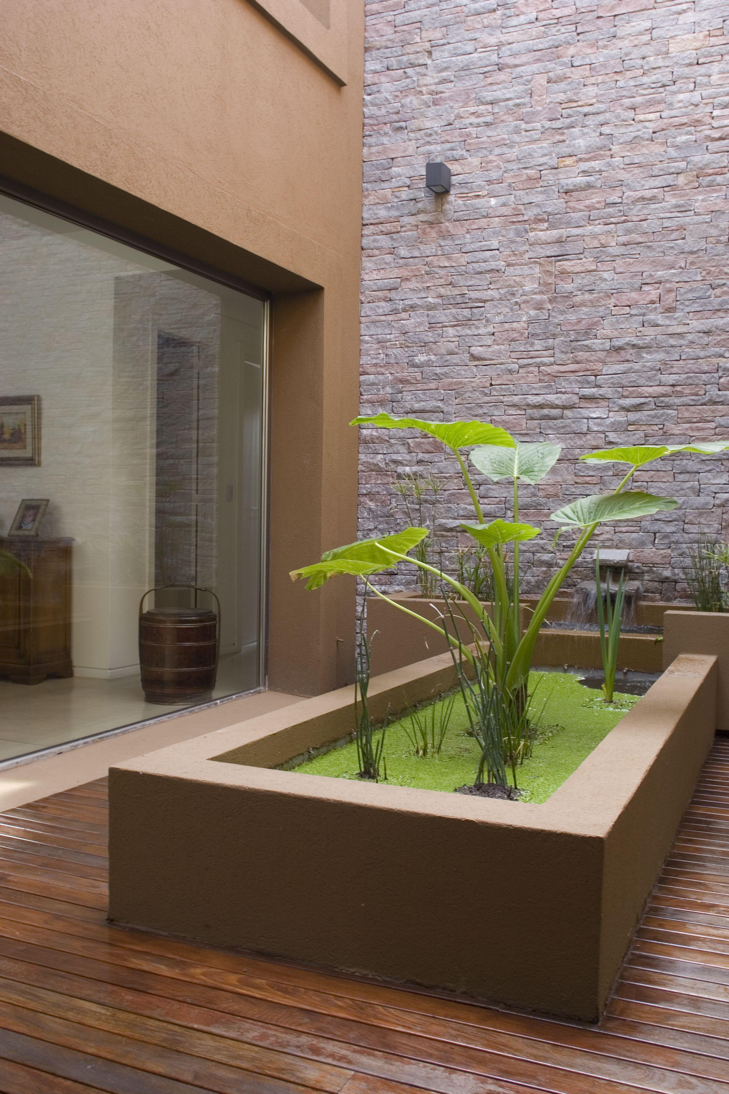plantes d 39 eau sur balcon jardins urbains urban farming pinterest bassin balcons et eaux. Black Bedroom Furniture Sets. Home Design Ideas