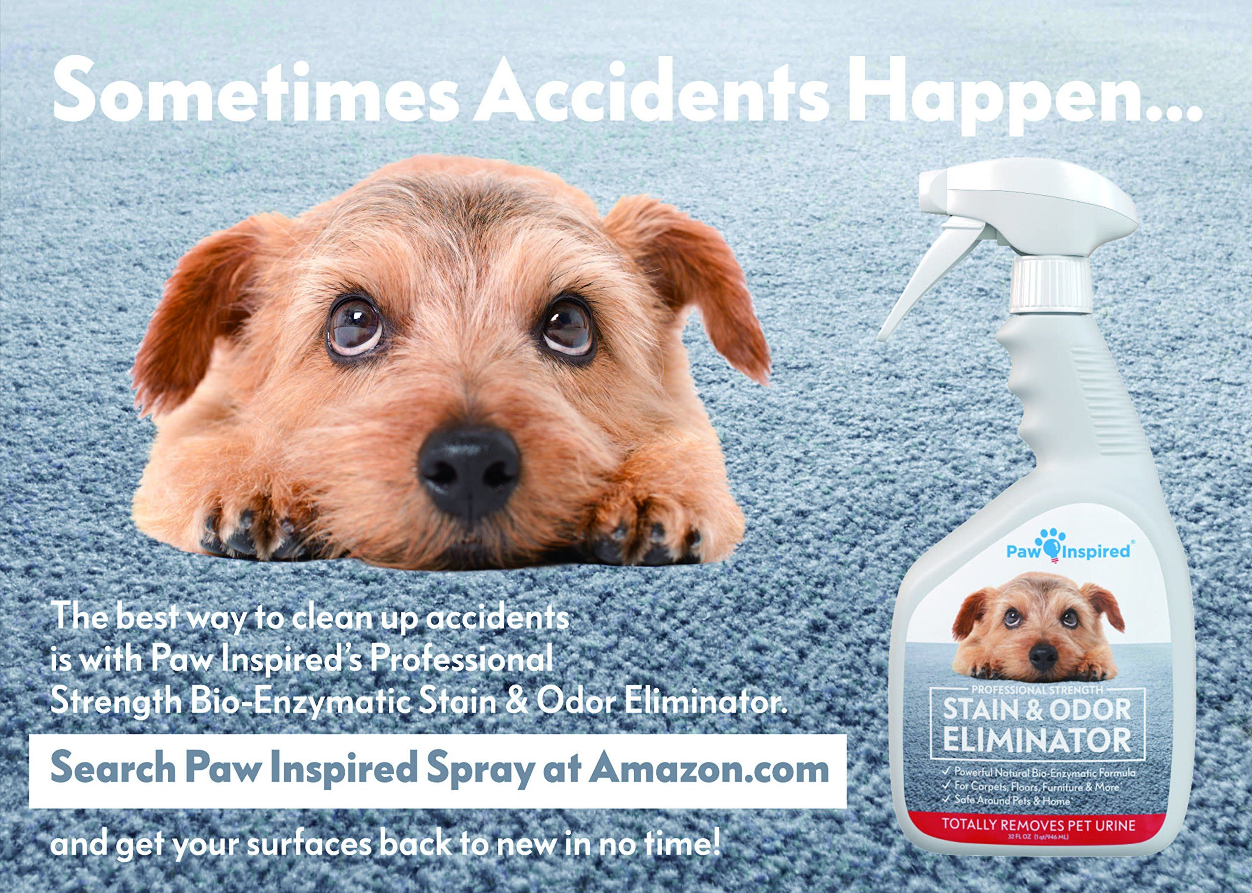 Paw Inspired Ultra Protection Female Disposable Dog Diapers Ad