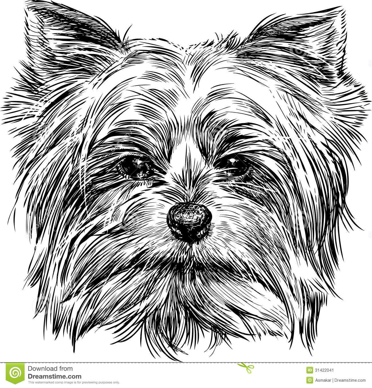 Pin By Michelle Ross On Zentangle Yorkie Pics Dog Design Dog Vector Yorkie