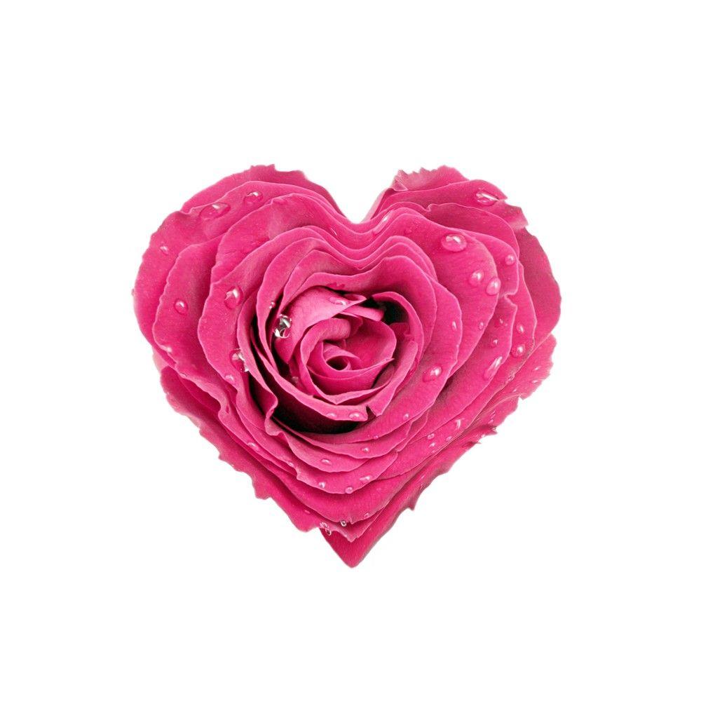 Flowers  C B Heart Shaped
