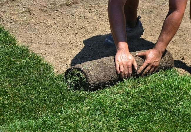 Bob Vila S 10 Must Do September Projects How To Lay Sod Landscaping Images Bob Vila