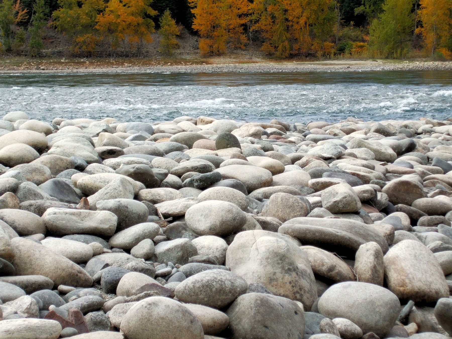 Beach Rocks 5 A beach of smooth round rocks a busy river autumn