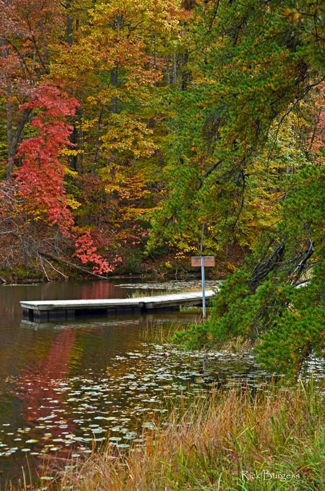 Dock at Plum Orchard West virginia image, New river