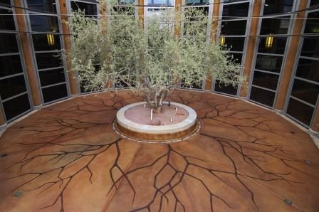 cool floor our soycrete concrete stain and ecotuff finish