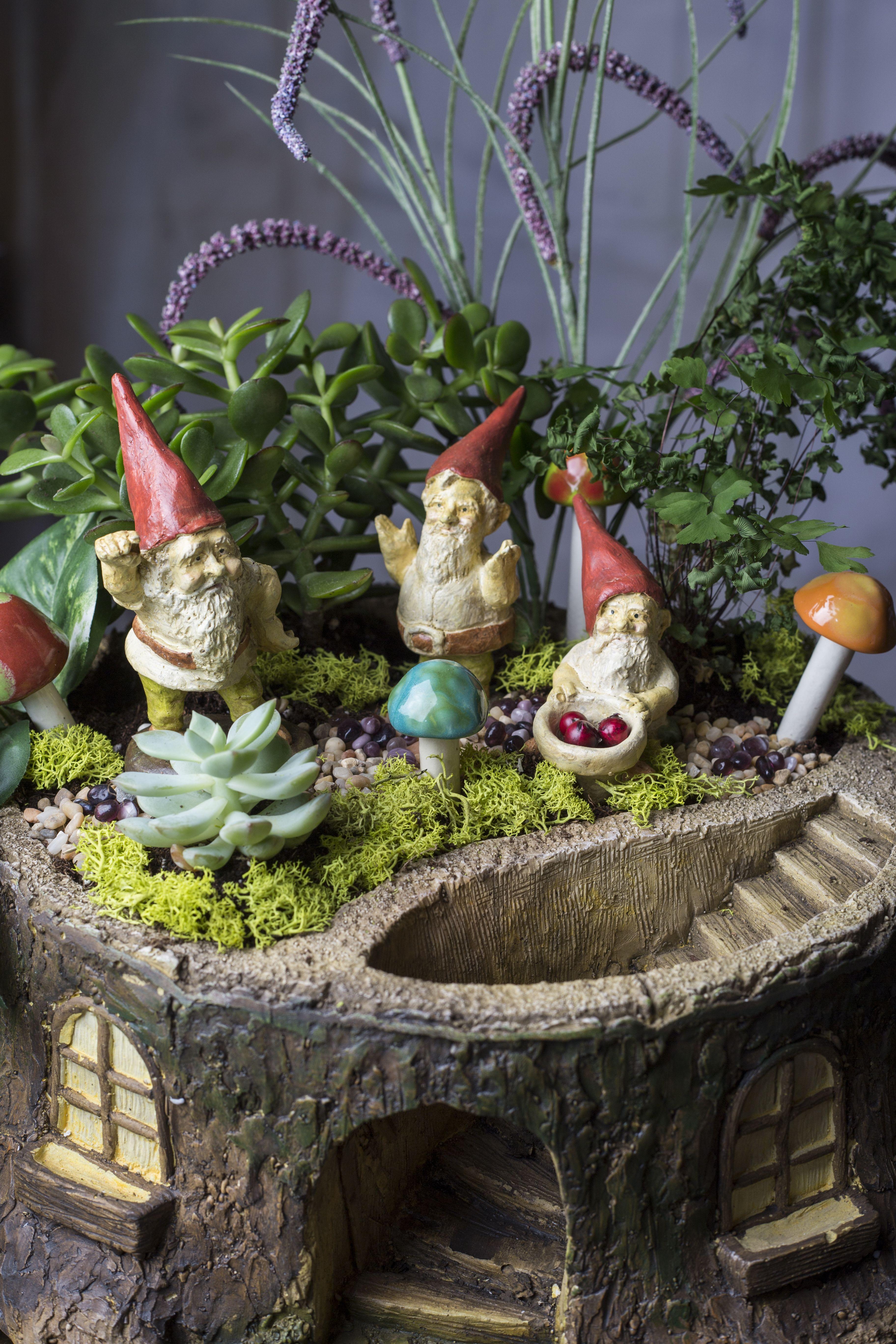 Pin On Fairy Garden