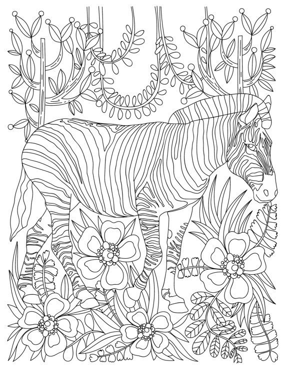 Scenes From Psalms Adult Coloring Book Color The Comfort Of God S