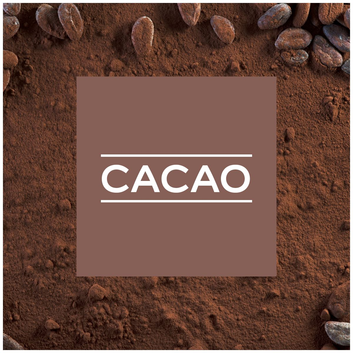 Nuancier Couleur Chocolat intérieur couleur cacao et chocolat dulux valentine | couleurs gourmandes
