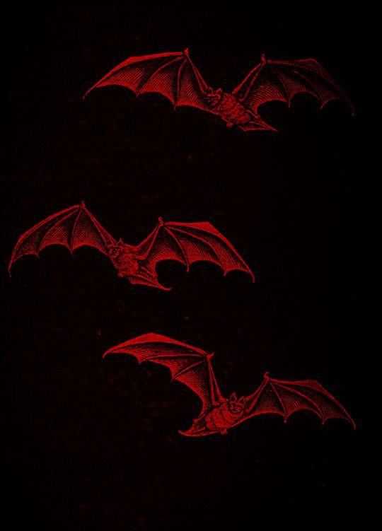 Vintage Halloween Source Dracularsredchamber Tumblr Red Aesthetic Red Aesthetic Grunge Dark Aesthetic