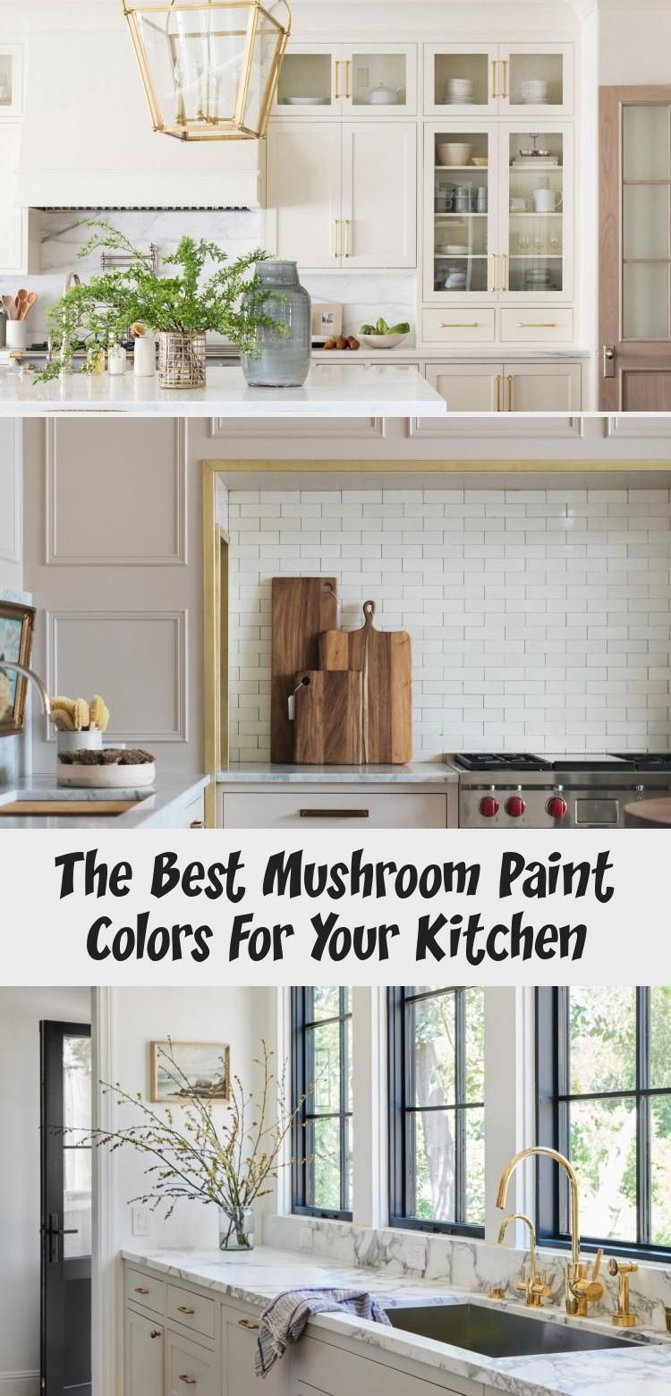 The Best Mushroom Paint Colors For Your Kitchen Mushroom Kitchen Cabinetry The Identite Collect In 2020 Classic White Kitchen Kitchen Decor Interior Design Kitchen