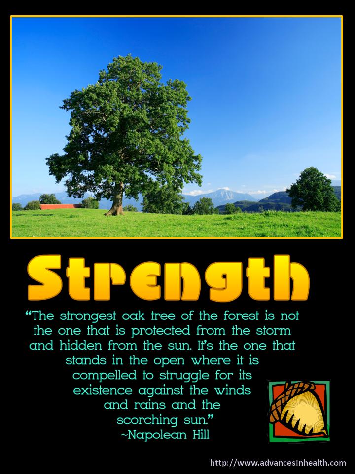 "Strength Inspirational Meme ""The strongest oak tree of"