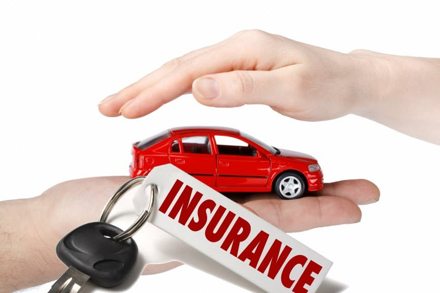 Cubit Insurance Is The Best And Renowned Insurance Company In