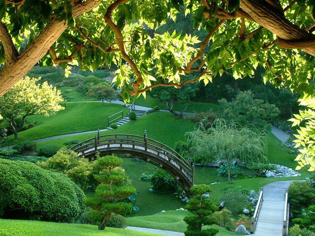 los mas bellos jardines japoneses foros per - Jardines Japoneses