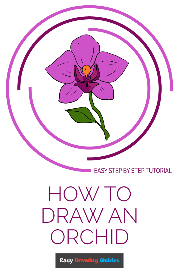 How to Draw a Beautiful Orchid - Really Easy Drawing ...