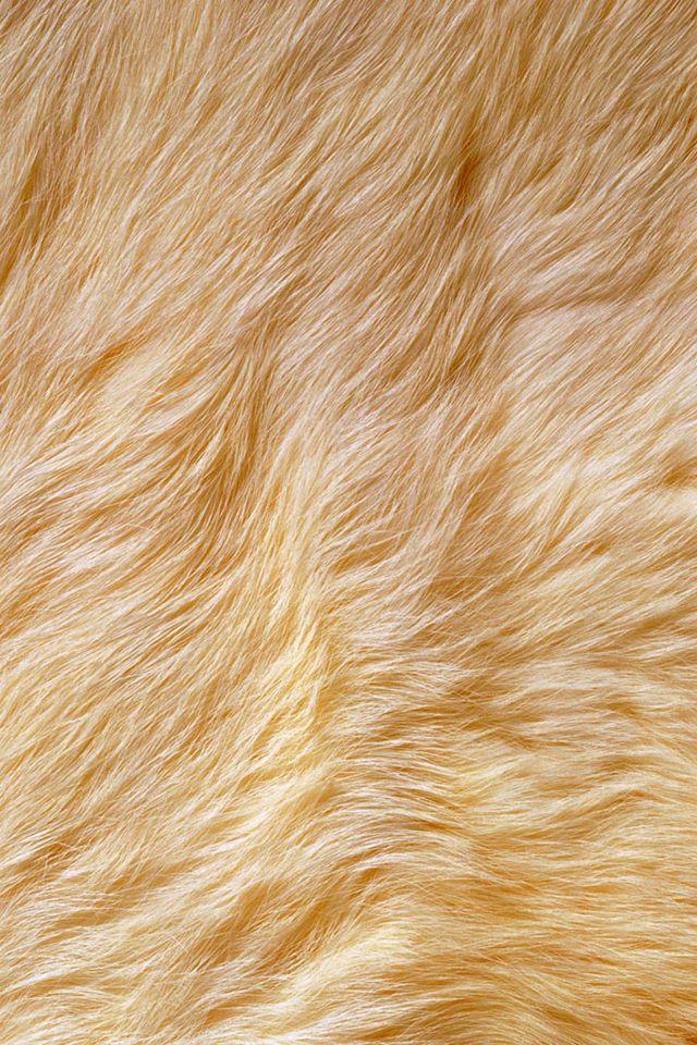 Fur IPhone Wallpaper