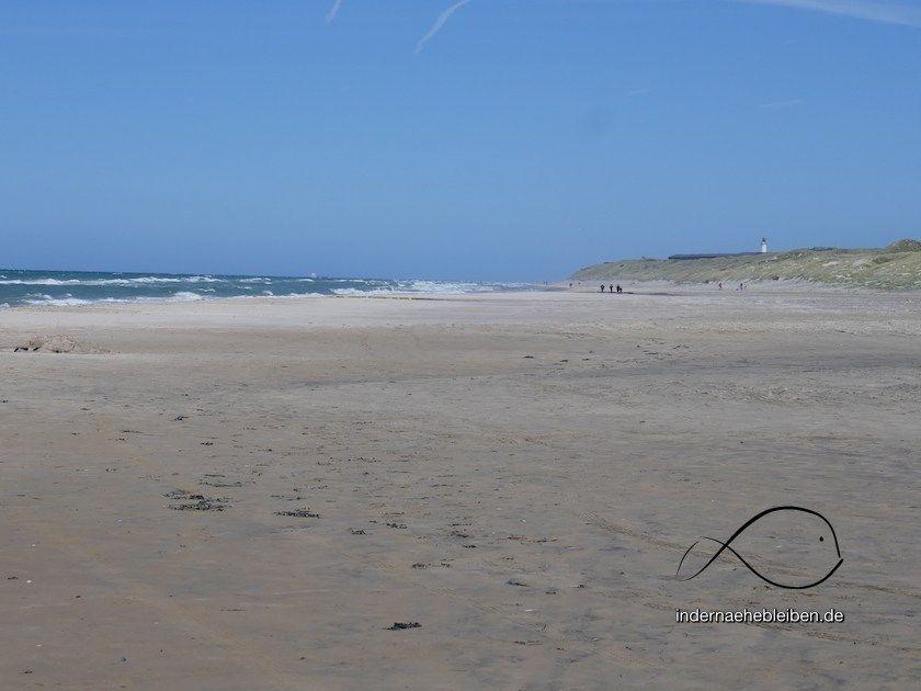 sommer in tornby strand der norden von dänemark