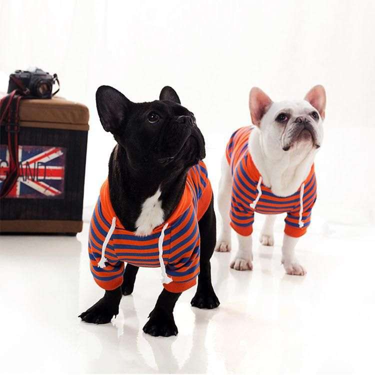 Light Spring Striped French Bulldog Hoodie Animals Our 4