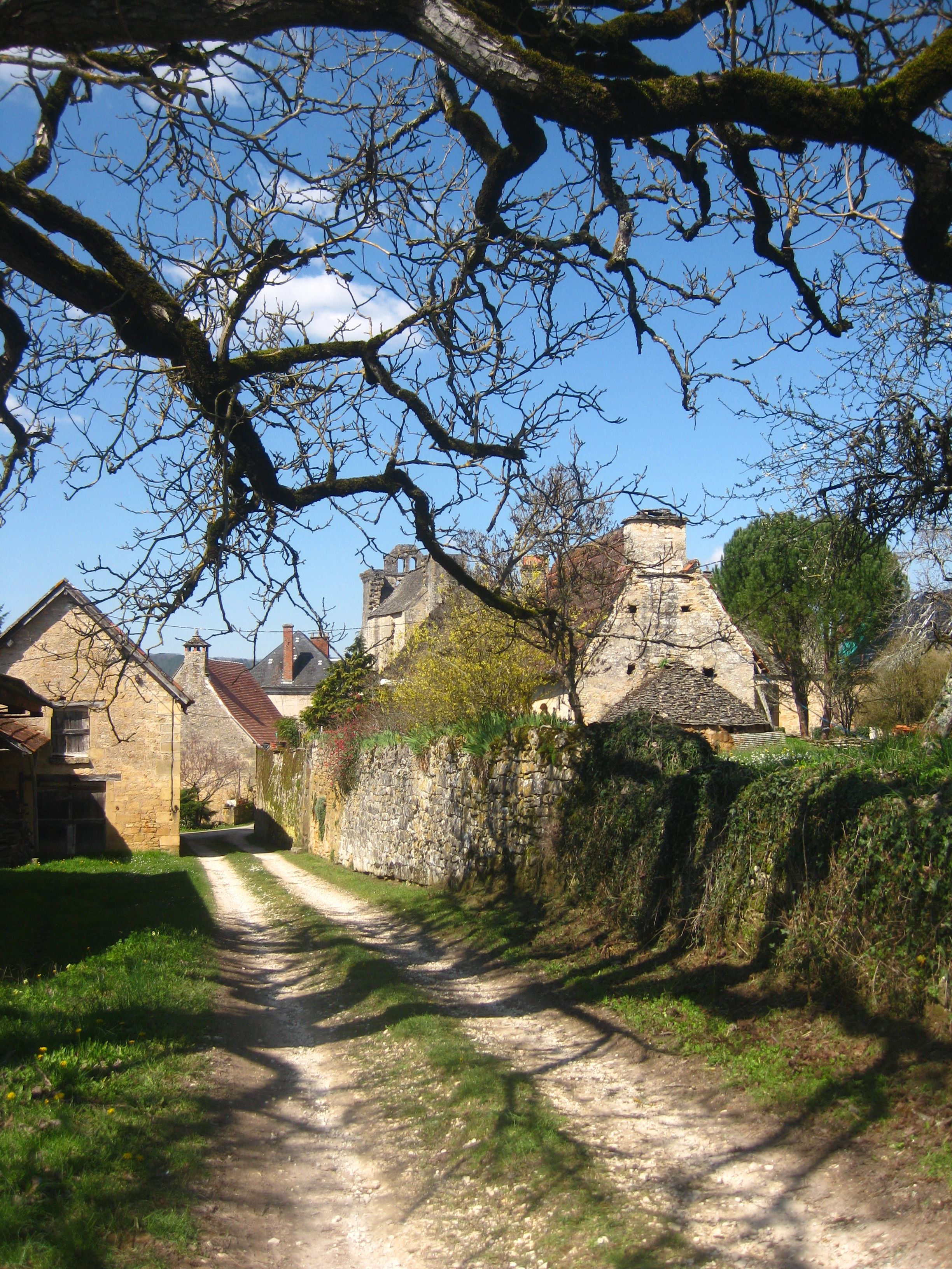 Attractions Dordogne Le Casse Noix Chambres D Hotes Bed And Breakfast Sarlat La Caneda Dordogne Perigord Noir Dordogne Bed And Breakfast Sarlat