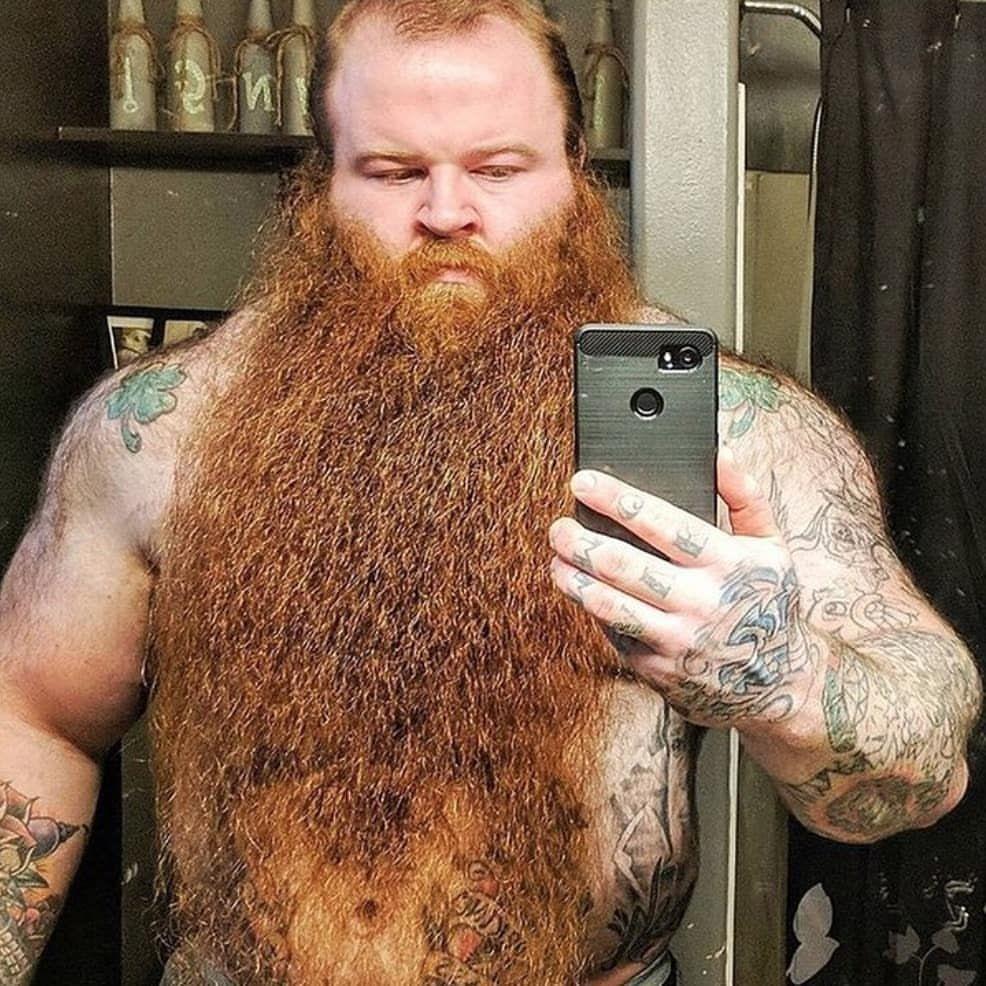 Pleasing Pin By Benjamin Baird On Beards Beard Lover Beard Styles Red Beard Schematic Wiring Diagrams Phreekkolirunnerswayorg