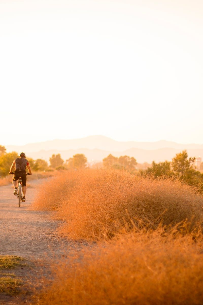 Free stock photo of path, bikes, bicycles, bicyclists