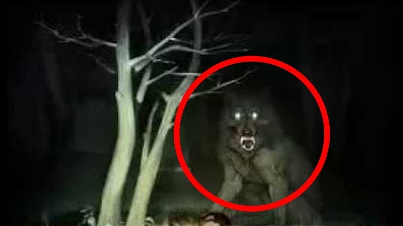 5 Werewolves Caught On Camera & Spotted In Real Life! | Top