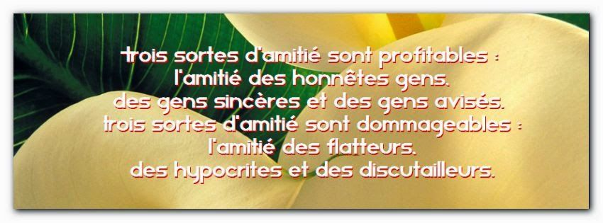 Fabuleux Citation d'amitié gaché | Amitié | Pinterest | Amitié et Citation OK47