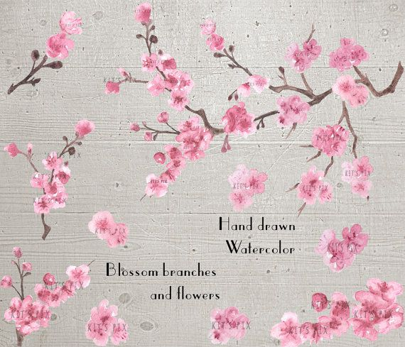 Hand painted watercolor cherry blossom cherry blossom branch hand painted watercolor cherry blossom cherry blossom branch floral clipart clip art mightylinksfo