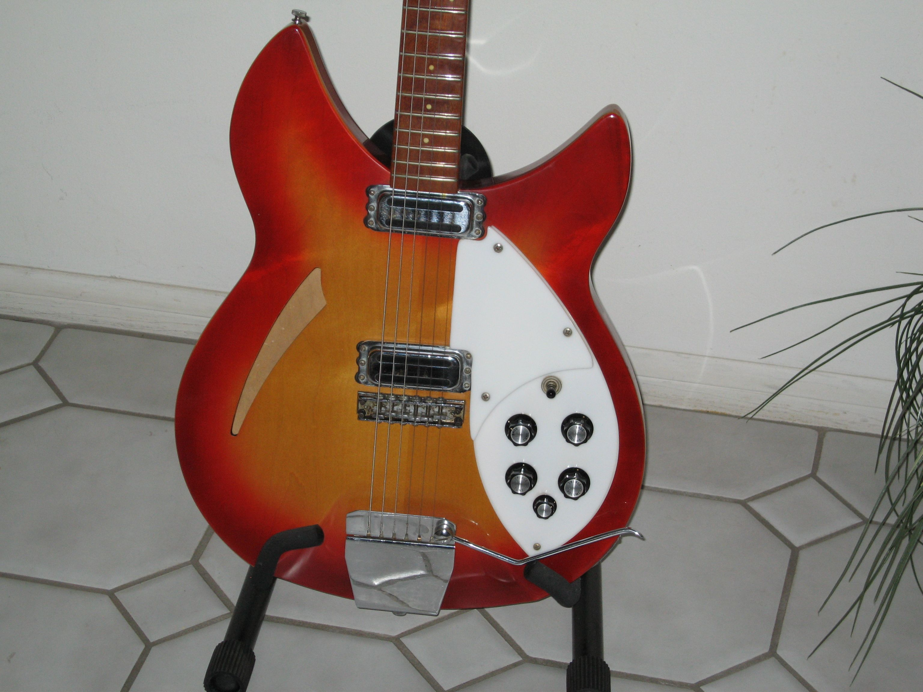 My 1966 Rickenbacher 360!