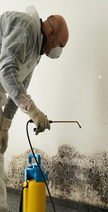 Uxbridge Asbestos Removal Asbestos removal, Restoration