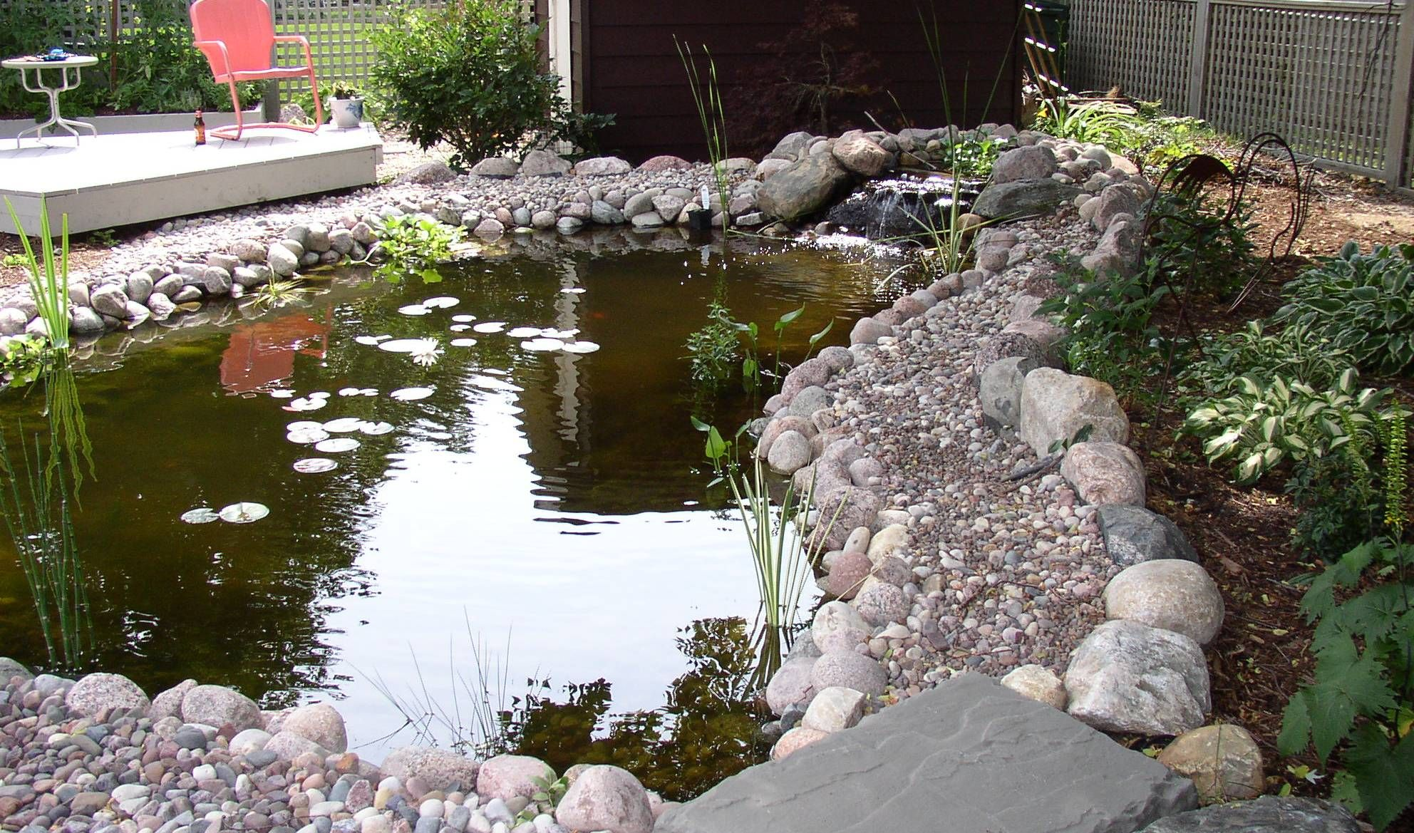 backyard duck pond - Bing Images | Duck Ideas | Backyard ...