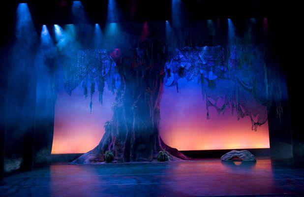 Lion King Broadway Rafiki Tree Of Life Theater In 2019