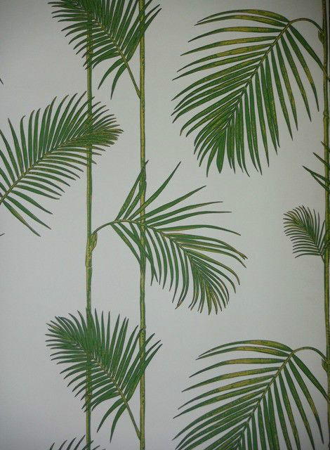 Details about Green Palm Leaves Wallpaper Caicos Fern