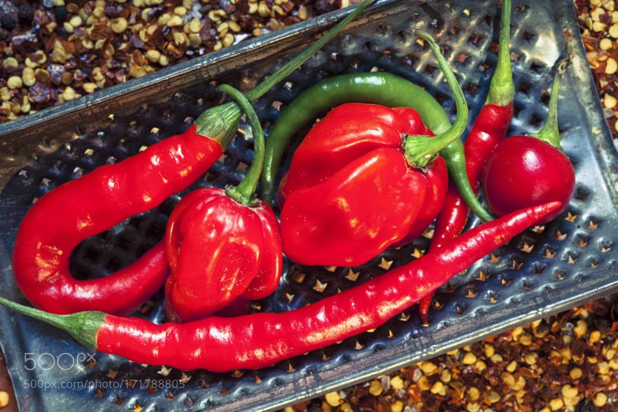 chilli peppers by miromartinic