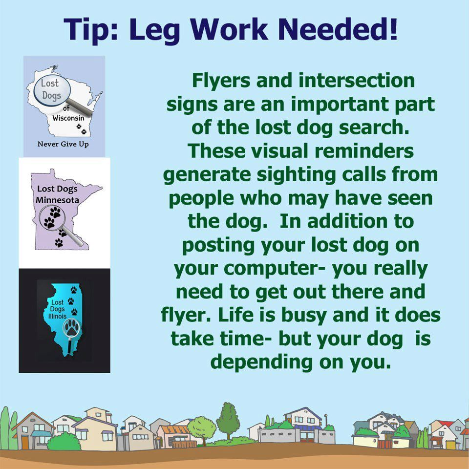 Flyers & intersection signs are an important part of the