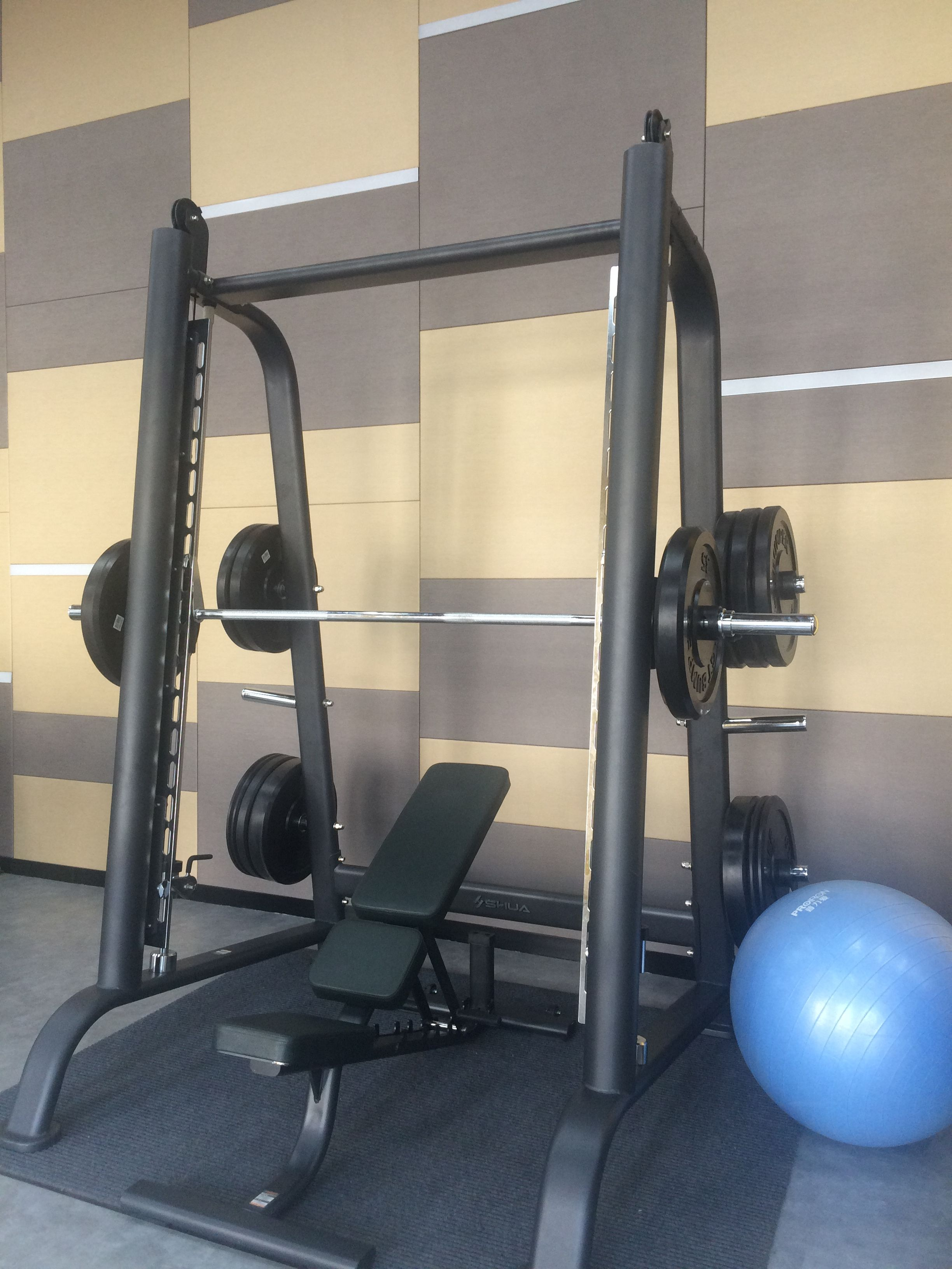 Different weight plate and barbell set olympic weights