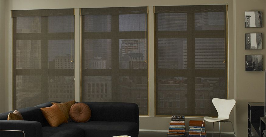 one day blinds day blinds woven wood shades one of todays hottest styles offer renewable styles