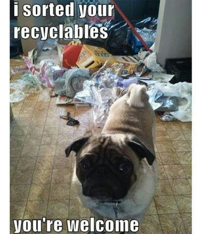 For More Information On Upcycling And Waste Management Go To Http