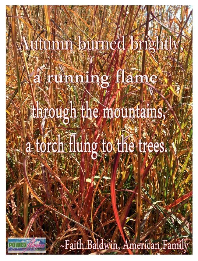 Fall Garden Quotes