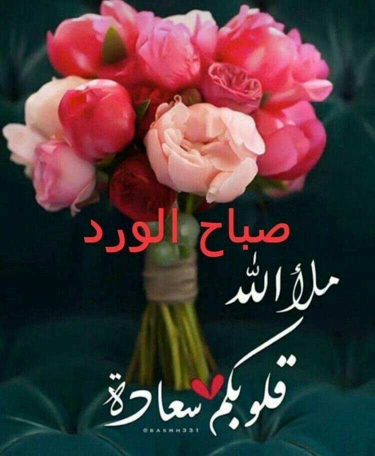 Pin By Ali Salama On صباح مساء Good Morning Beautiful Quotes Good Morning Image Quotes Good Morning Arabic