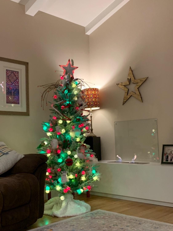 Image result for 6' Whimsy Flocked LED PreLit Christmas
