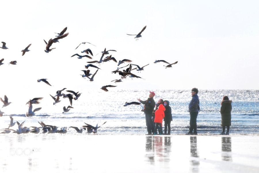 """Family outing on beach @ Incheon  Go to http://iBoatCity.com and use code PINTEREST for free shipping on your first order! (Lower 48 USA Only). Sign up for our email newsletter to get your free guide: """"Boat Buyer's Guide for Beginners."""""""