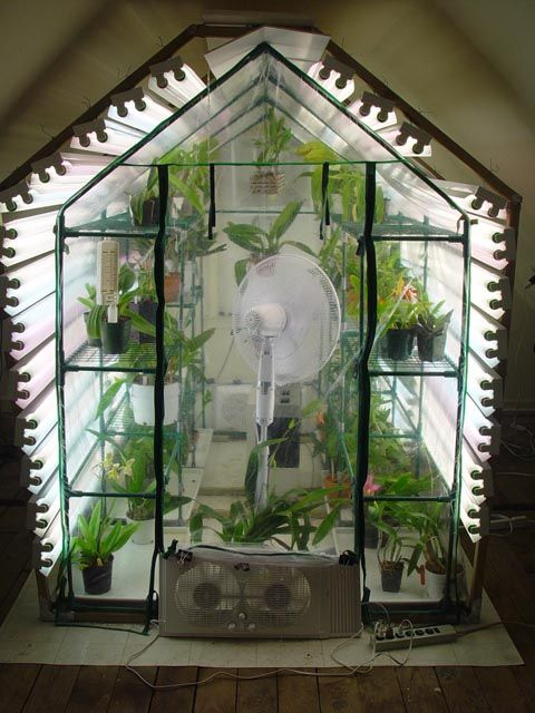 I Deff Want An Indoor Greenhouse A Little Bit Bigger And