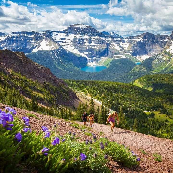 Waterton Park, Alberta, Canada  📷 Taylor Burk Photography