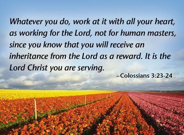 Today we are focusing on some Scripture from Colossians 3, which has an incredible amount of scripture for us to digest. Please read and pray with us!