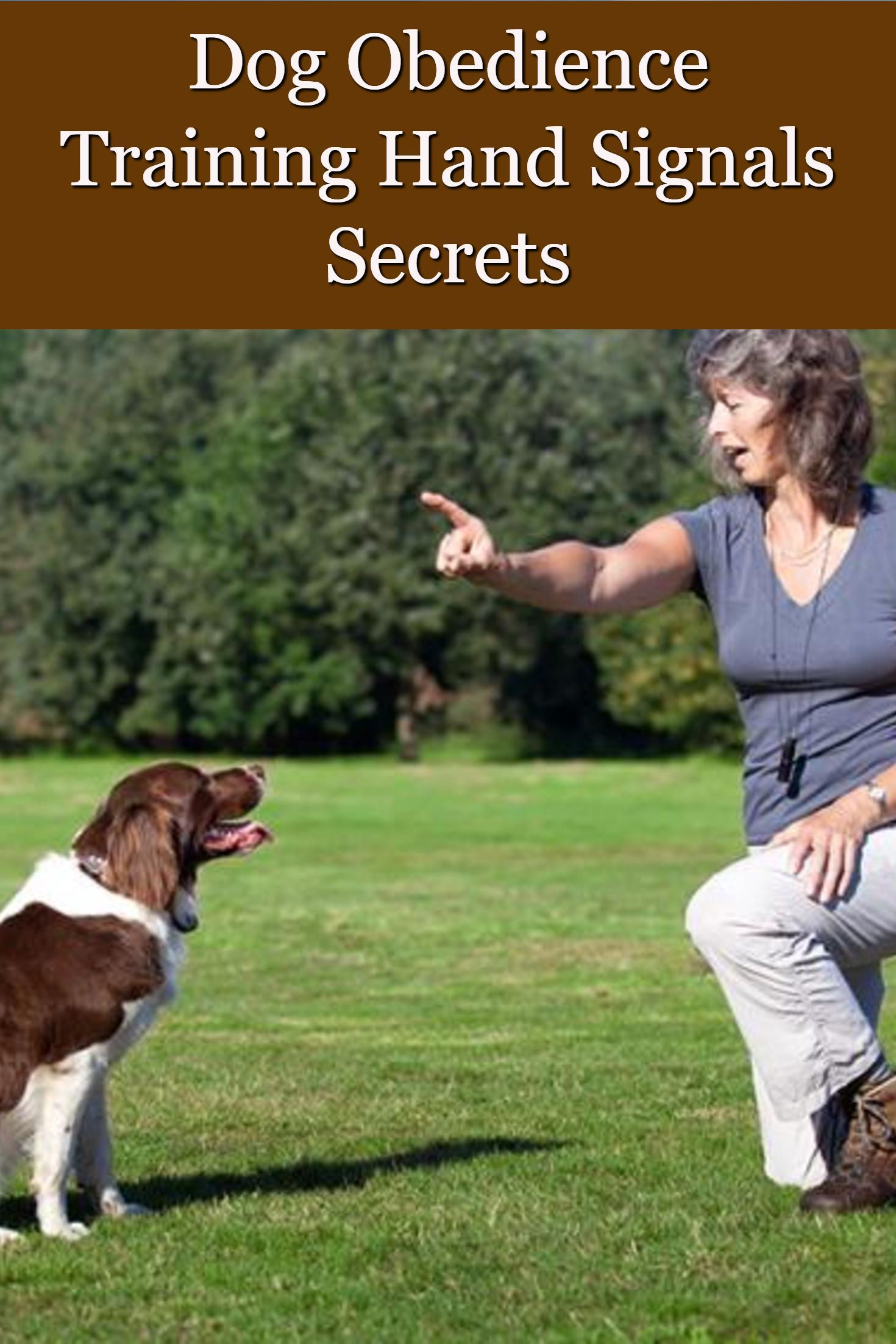 Dog Obedience Training Hand Signals Secrets Dog Obedience Hand