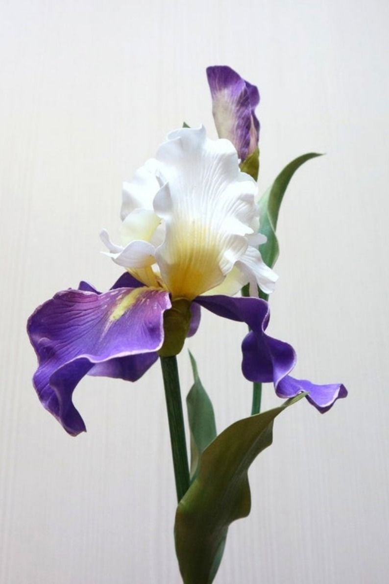 Real Touch White Purple Iris Flower Etsy In 2020 Iris Flowers Flower Aesthetic Purple Iris