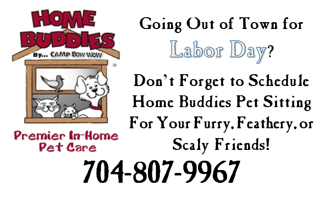 Make sure you remember your stay at home pets when making
